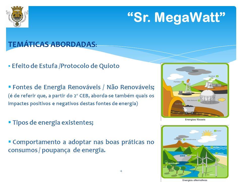 Efeito de Estufa /Protocolo de Quioto Fontes de Energia Renováveis / Não Renováveis; (é de referir que, a partir do 2º CEB, aborda-se também quais os impactes positivos e negativos destas fontes de energia) Tipos de energia existentes; Comportamento a adoptar nas boas práticas no consumos / poupança de energia.