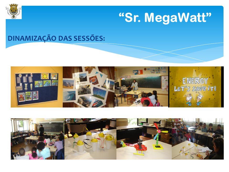 8 Sr. MegaWatt CANDIDATURAS 2010/2011