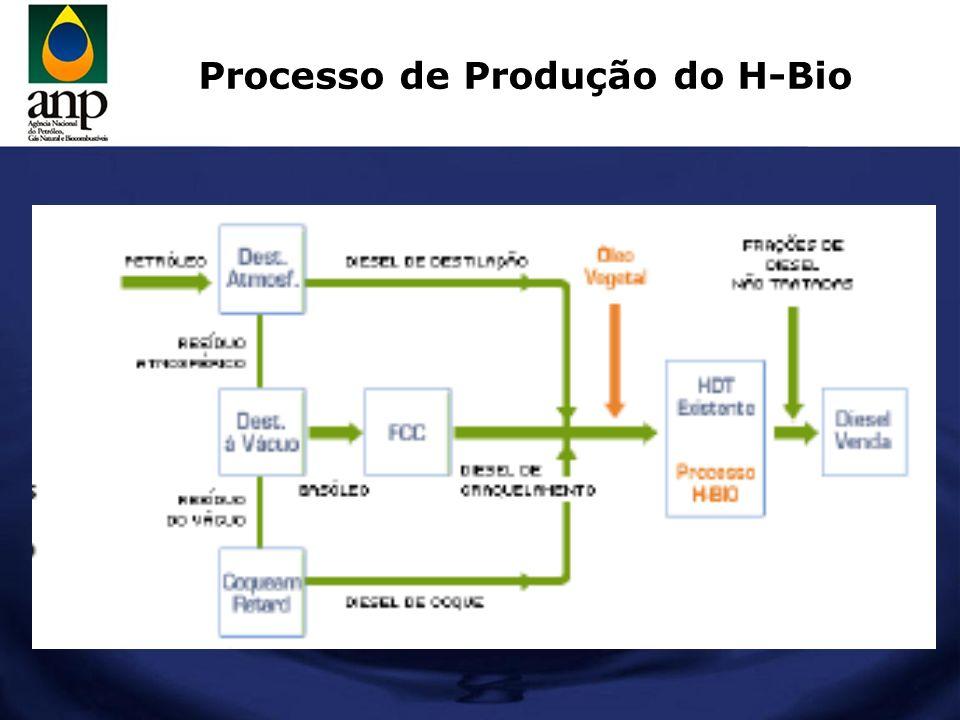 Produção de H-Bio (PNE 2030)