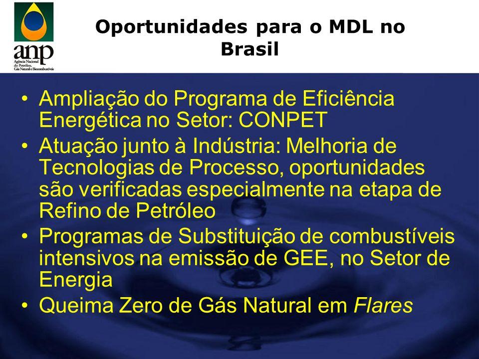 Oportunidades para o MDL no Brasil Ampliação do CONPET, com a criação de novos projetos, com o objetivo de racionalizar a utilização dos derivados de petróleo – ênfase na racionalização do consumo de gasolina automotiva Ampliação da oferta interna de álcool combustível (tecnologia flex fuel já disponível), considerando-se que esta não poderia ser ampliada na ausência dos investimentos oriundos do MDL Ampliação da oferta interna de H-Bio