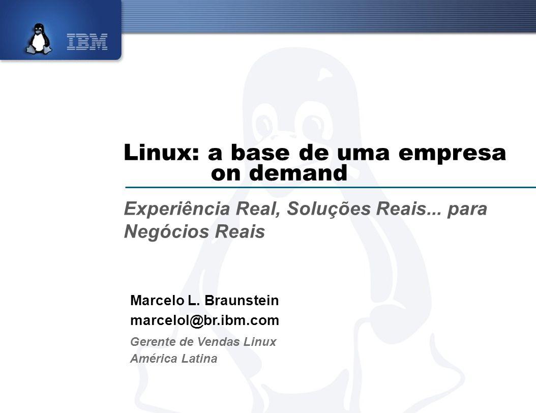 Linux: a base de uma empresa on demand Experiência Real, Soluções Reais... para Negócios Reais Marcelo L. Braunstein marcelol@br.ibm.com Gerente de Ve
