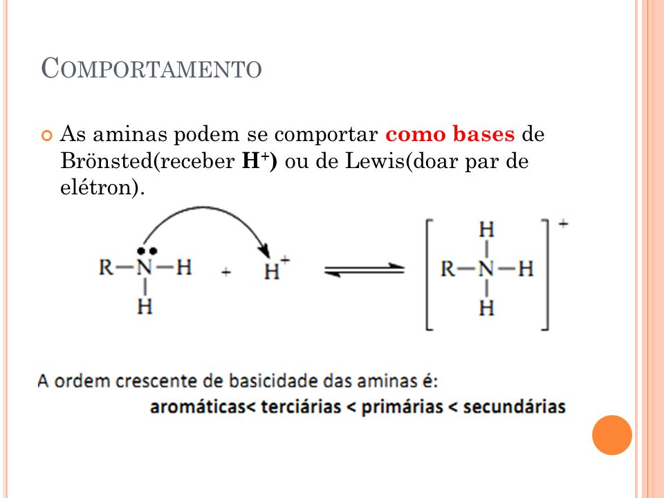 C OMPORTAMENTO As aminas podem se comportar como bases de Brönsted(receber H + ) ou de Lewis(doar par de elétron).