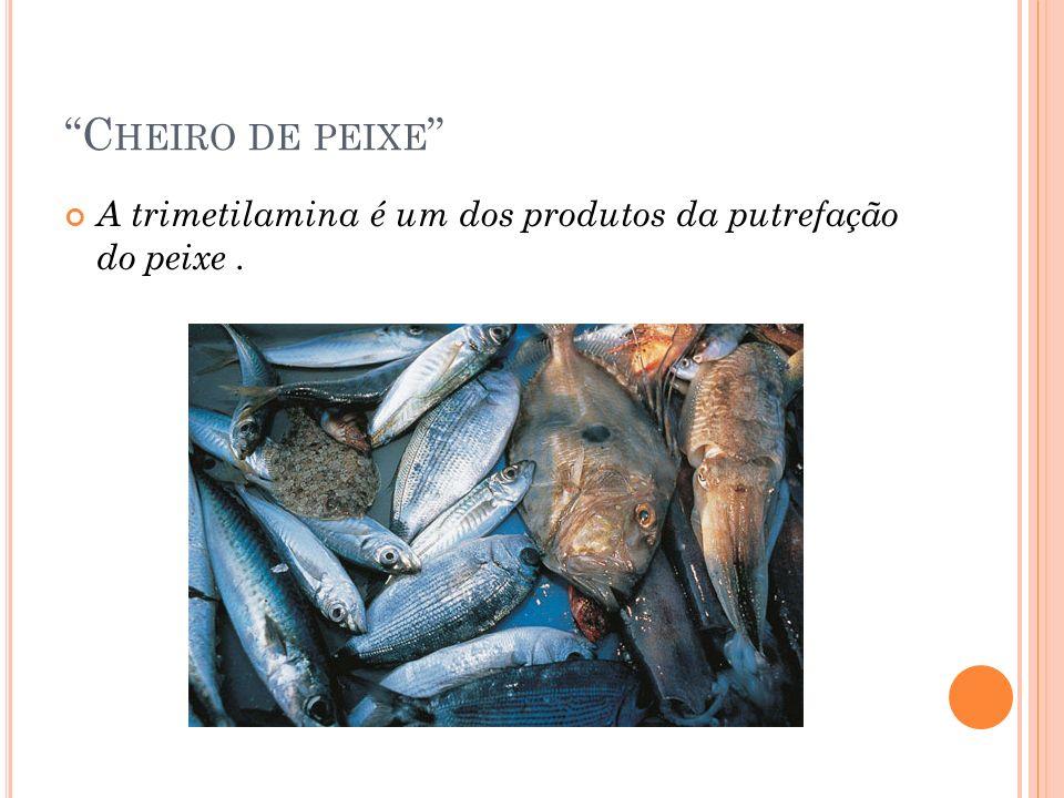 C HEIRO DE PEIXE A trimetilamina é um dos produtos da putrefação do peixe.