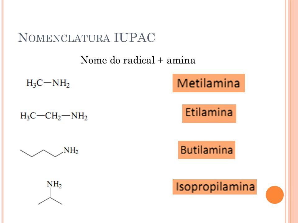 N OMENCLATURA IUPAC Nome do radical + amina