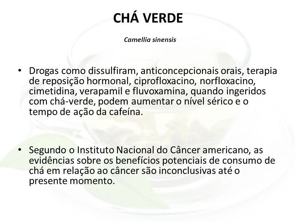 CHÁ VERDE Camellia sinensis Drogas como dissulfiram, anticoncepcionais orais, terapia de reposição hormonal, ciprofloxacino, norfloxacino, cimetidina,