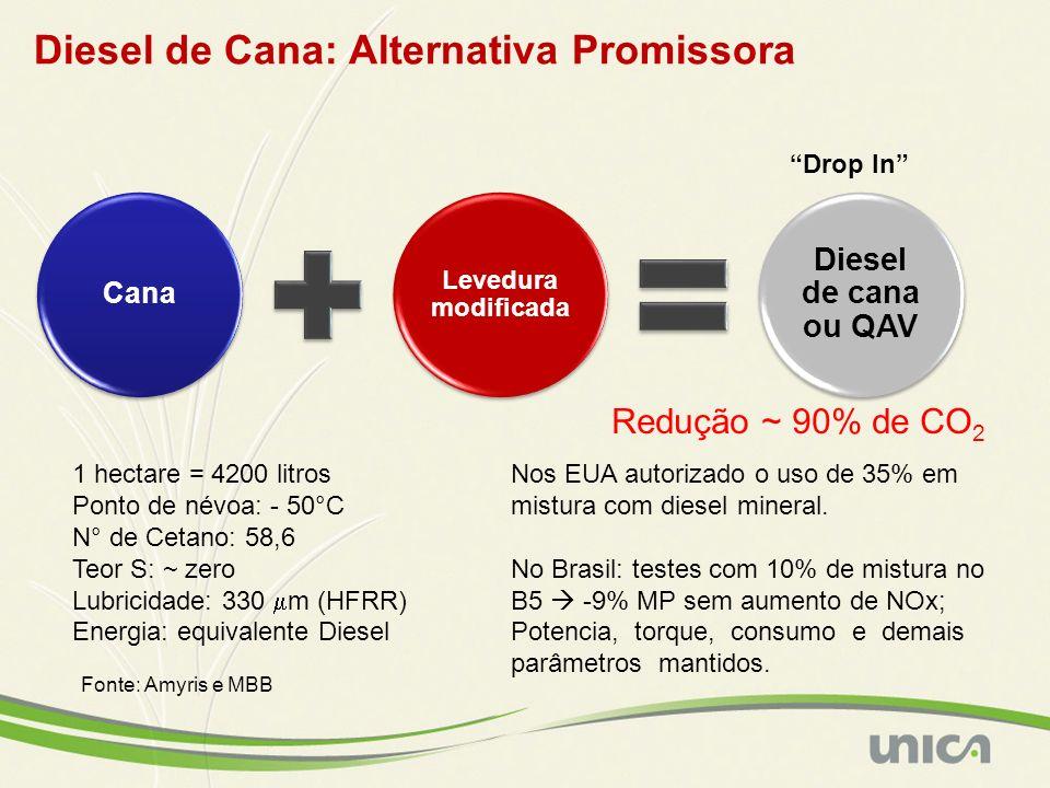 Diesel de Cana: Alternativa Promissora Cana Levedura modificada Diesel de cana ou QAV 1 hectare = 4200 litros Ponto de névoa: - 50°C N° de Cetano: 58,
