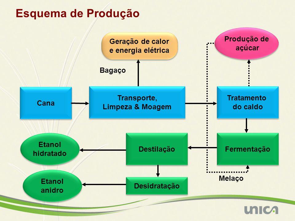 Esquema de Produção Cana Transporte, Limpeza & Moagem Transporte, Limpeza & Moagem Tratamento do caldo Tratamento do caldo Fermentação Produção de açú