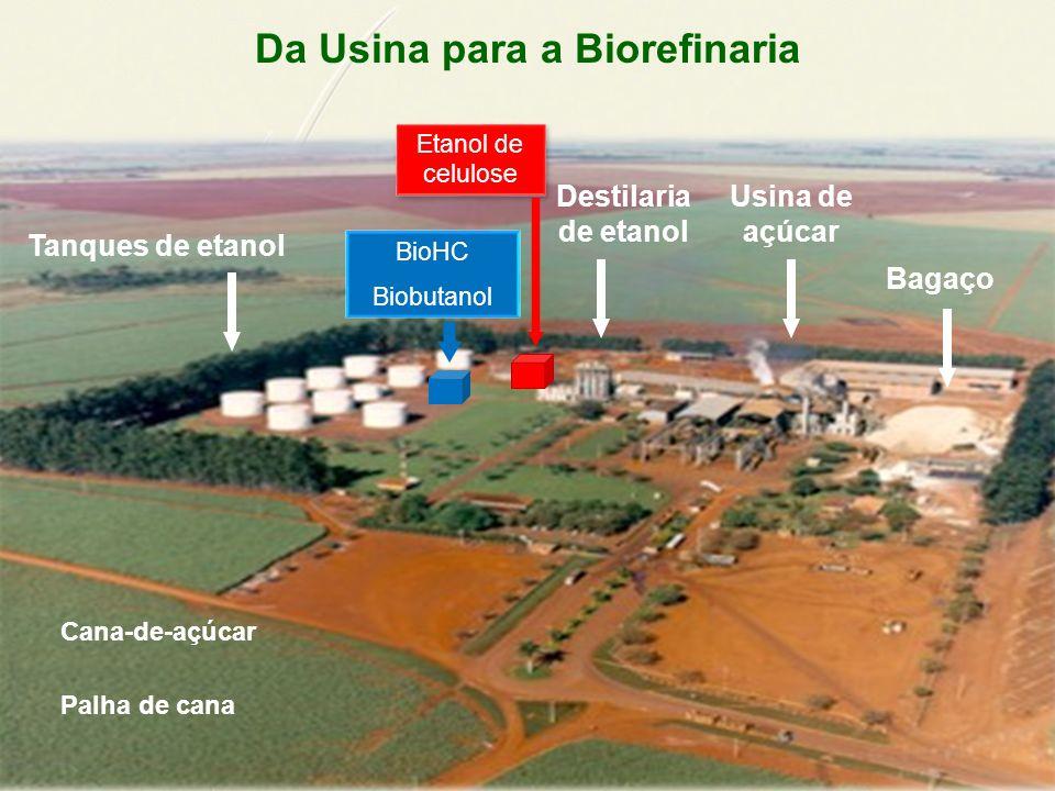Da Usina para a Biorefinaria Bagaço Cana-de-açúcar Destilaria de etanol Usina de açúcar Tanques de etanol Etanol de celulose Palha de cana BioHC Biobutanol