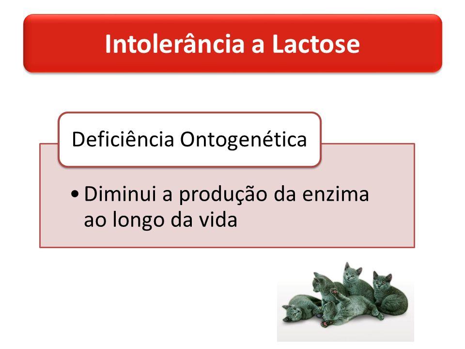 Intolerância a Lactose Diminui a produção da enzima ao longo da vida Deficiência Ontogenética