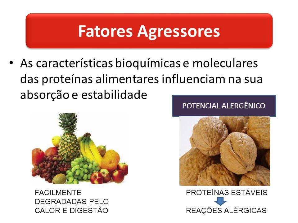 As características bioquímicas e moleculares das proteínas alimentares influenciam na sua absorção e estabilidade POTENCIAL ALERGÊNICO FACILMENTE DEGRADADAS PELO CALOR E DIGESTÃO PROTEÍNAS ESTÁVEIS REAÇÕES ALÉRGICAS Fatores Agressores