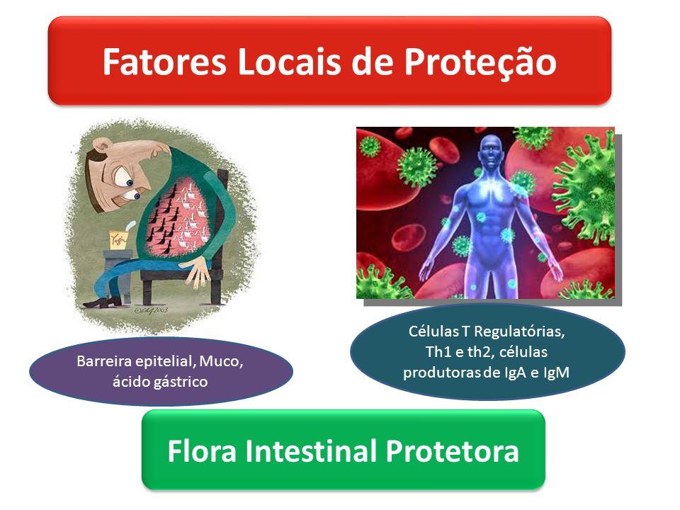 Fatores Locais de Proteção Flora Intestinal Protetora Barreira epitelial, Muco, ácido gástrico Células T Regulatórias, Th1 e th2, células produtoras de IgA e IgM