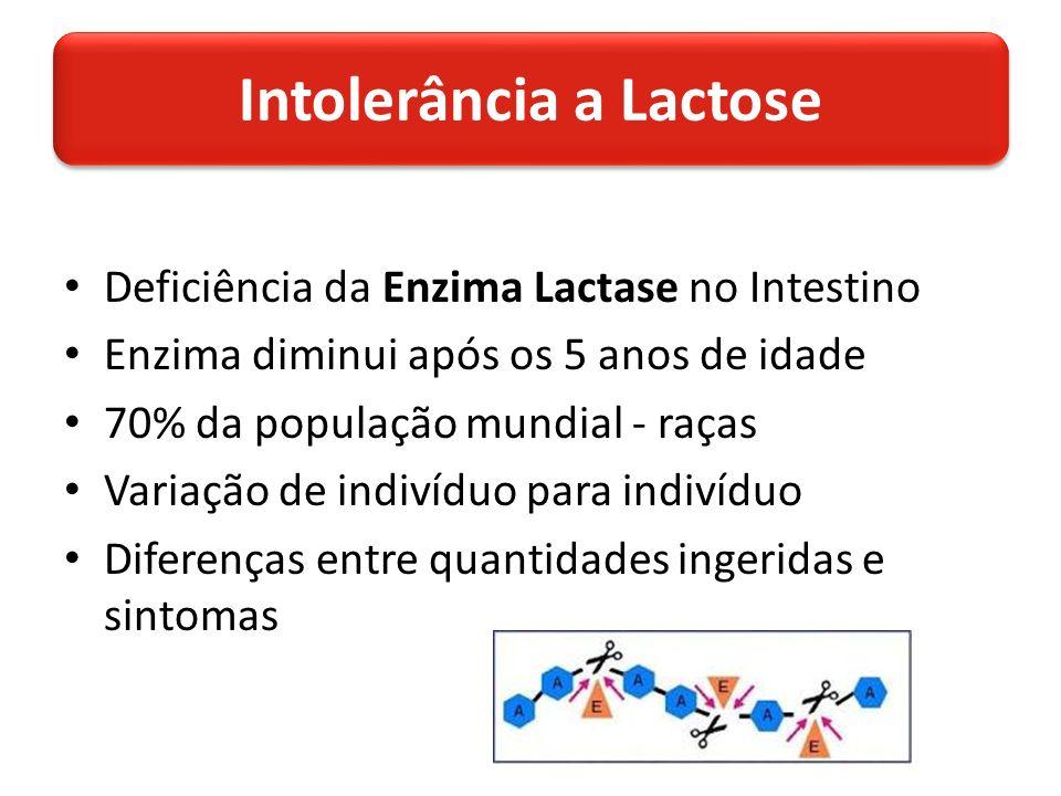 Deficiência da Enzima Lactase no Intestino Enzima diminui após os 5 anos de idade 70% da população mundial - raças Variação de indivíduo para indivíduo Diferenças entre quantidades ingeridas e sintomas Intolerância a Lactose