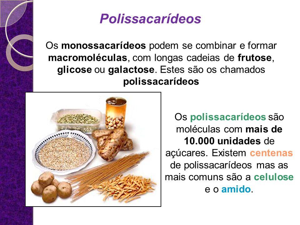 Os monossacarídeos podem se combinar e formar macromoléculas, com longas cadeias de frutose, glicose ou galactose.