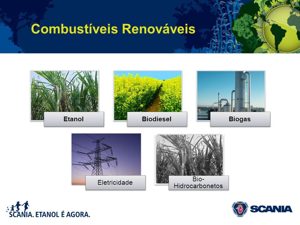 EtanolBiodieselBiogas Eletricidade Bio- Hidrocarbonetos Combustíveis Renováveis