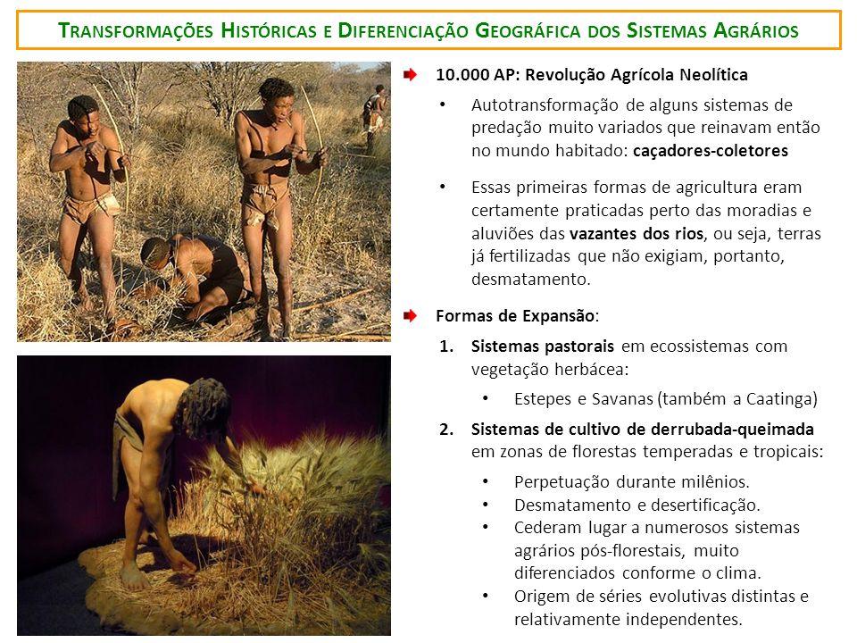 T RANSFORMAÇÕES H ISTÓRICAS E D IFERENCIAÇÃO G EOGRÁFICA DOS S ISTEMAS A GRÁRIOS 10.000 AP: Revolução Agrícola Neolítica Autotransformação de alguns s