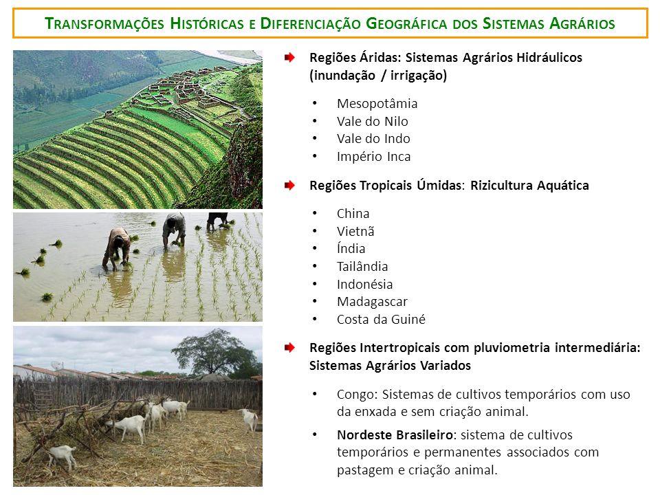 T RANSFORMAÇÕES H ISTÓRICAS E D IFERENCIAÇÃO G EOGRÁFICA DOS S ISTEMAS A GRÁRIOS Regiões Áridas: Sistemas Agrários Hidráulicos (inundação / irrigação)