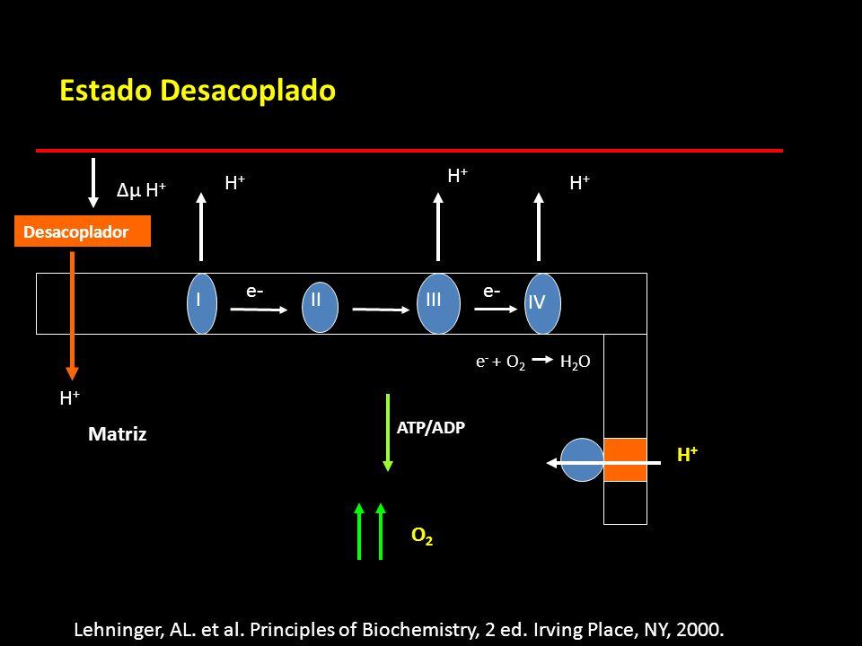 μ H + IIIIII IV H+H+ ATP/ADP e- e - + O 2 H 2 O Matriz Estado Desacoplado O2O2 Desacoplador H+H+ Lehninger, AL. et al. Principles of Biochemistry, 2 e