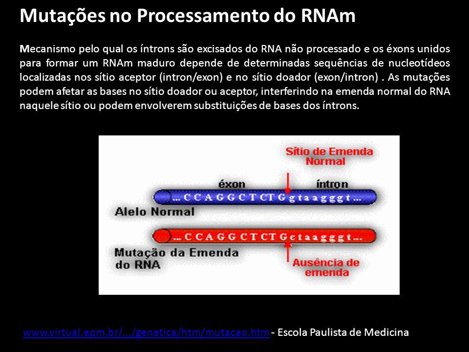 Mutações no Processamento do RNAm Mecanismo pelo qual os íntrons são excisados do RNA não processado e os éxons unidos para formar um RNAm maduro depe