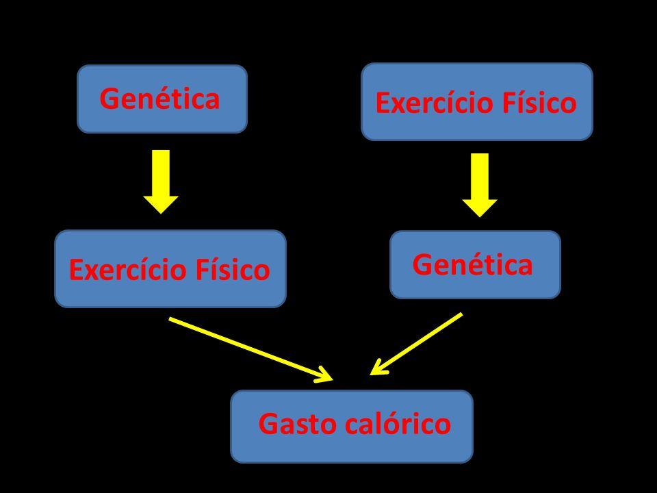 Genética Exercício Físico Gasto calórico Exercício Físico Genética