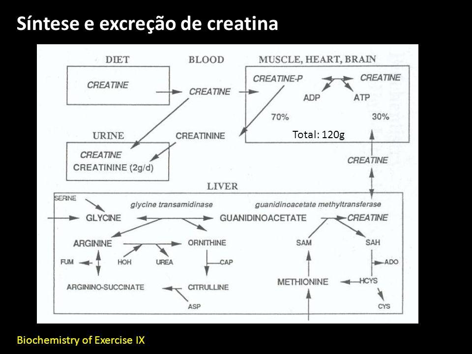 Síntese e excreção de creatina Biochemistry of Exercise IX Total: 120g