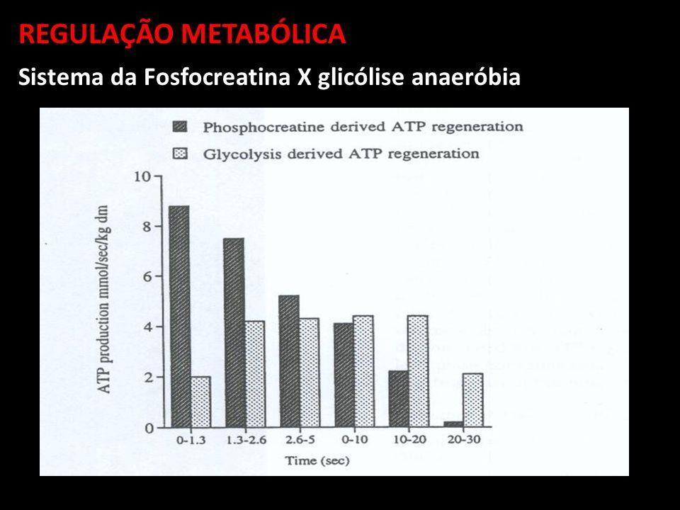 REGULAÇÃO METABÓLICA Sistema da Fosfocreatina X glicólise anaeróbia