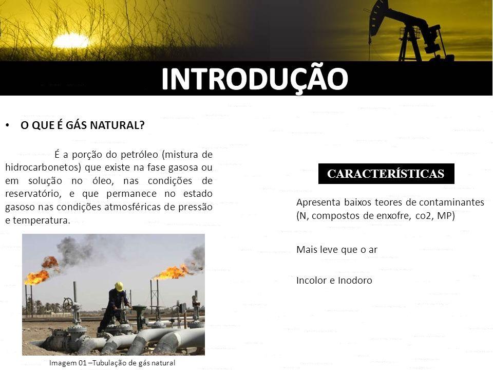 O QUE É GÁS NATURAL? É a porção do petróleo (mistura de hidrocarbonetos) que existe na fase gasosa ou em solução no óleo, nas condições de reservatóri