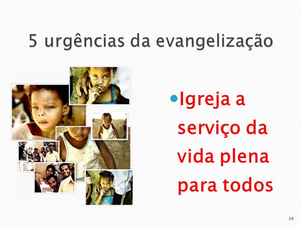 Igreja a serviço da vida plena para todos 34