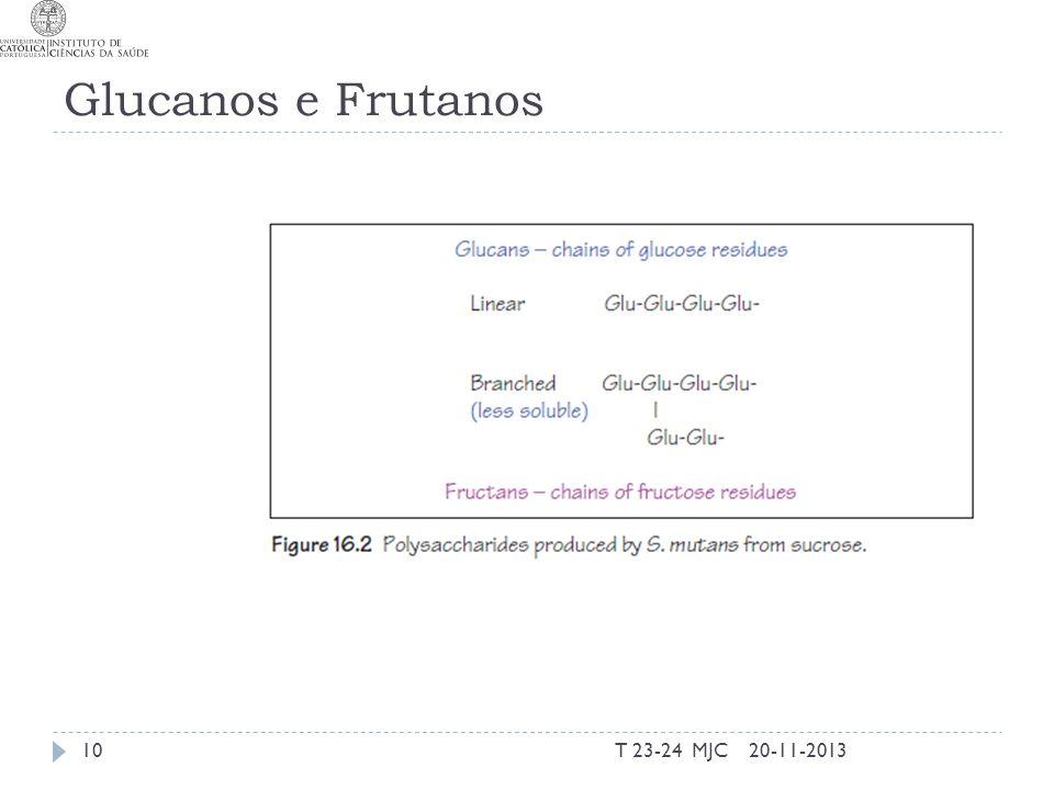 Glucanos e Frutanos 20-11-2013T 23-24 MJC10
