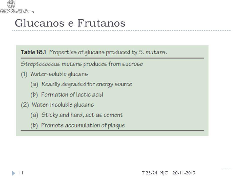 Glucanos e Frutanos 20-11-2013T 23-24 MJC11