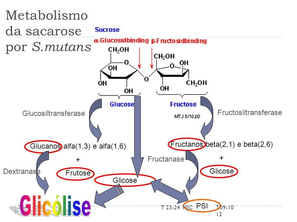20-11-2013 Metabolismo da sacarose por S.mutans Glucosiltransferase Glucanos alfa(1,3) e alfa(1,6) + Frutose Fructanos beta(2,1) e beta(2,6) + Glicose