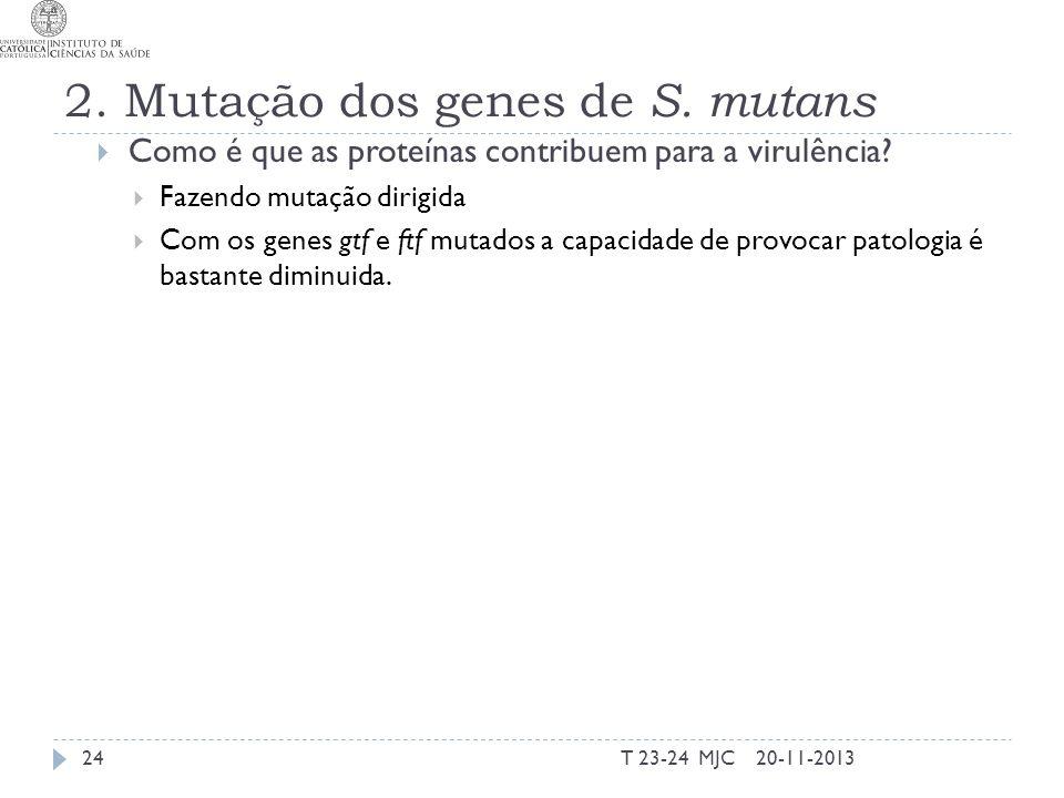 2. Mutação dos genes de S. mutans Como é que as proteínas contribuem para a virulência? Fazendo mutação dirigida Com os genes gtf e ftf mutados a capa