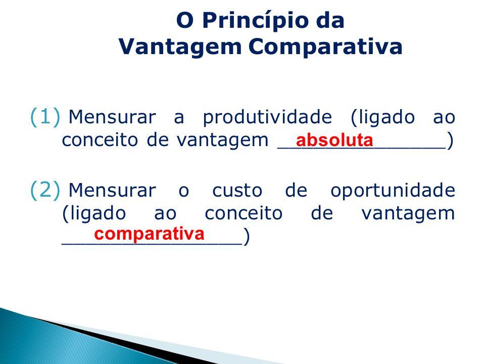 (1) Mensurar a produtividade (ligado ao conceito de vantagem ______________) (2) Mensurar o custo de oportunidade (ligado ao conceito de vantagem ____