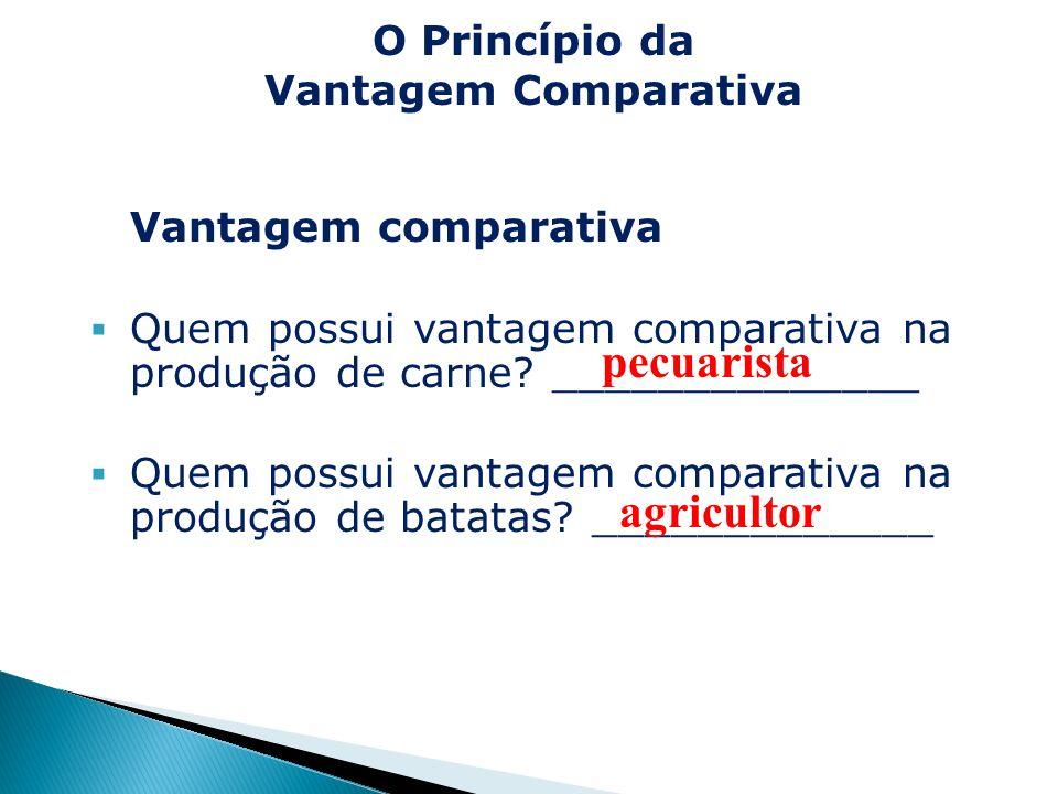 Vantagem comparativa Quem possui vantagem comparativa na produção de carne? ______________ Quem possui vantagem comparativa na produção de batatas? __