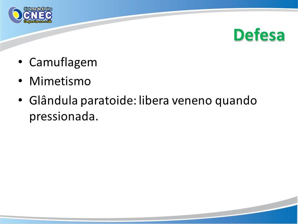 Defesa Camuflagem Mimetismo Glândula paratoide: libera veneno quando pressionada.