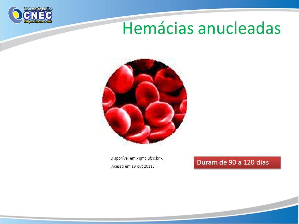 Hemácias anucleadas Disponível em:. Acesso em 19 out 2011. Duram de 90 a 120 dias