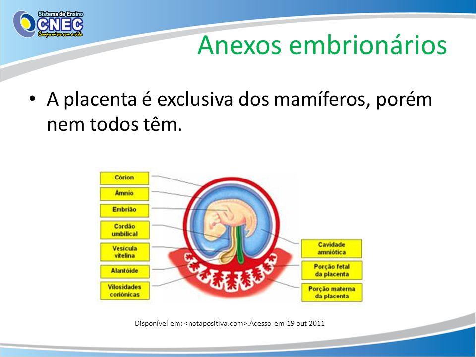 Anexos embrionários A placenta é exclusiva dos mamíferos, porém nem todos têm. Disponível em:.Acesso em 19 out 2011