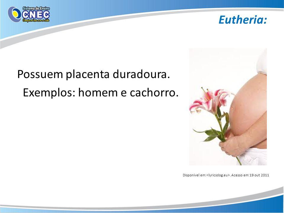 Eutheria: Possuem placenta duradoura. Exemplos: homem e cachorro. Disponível em:. Acesso em:19 out 2011