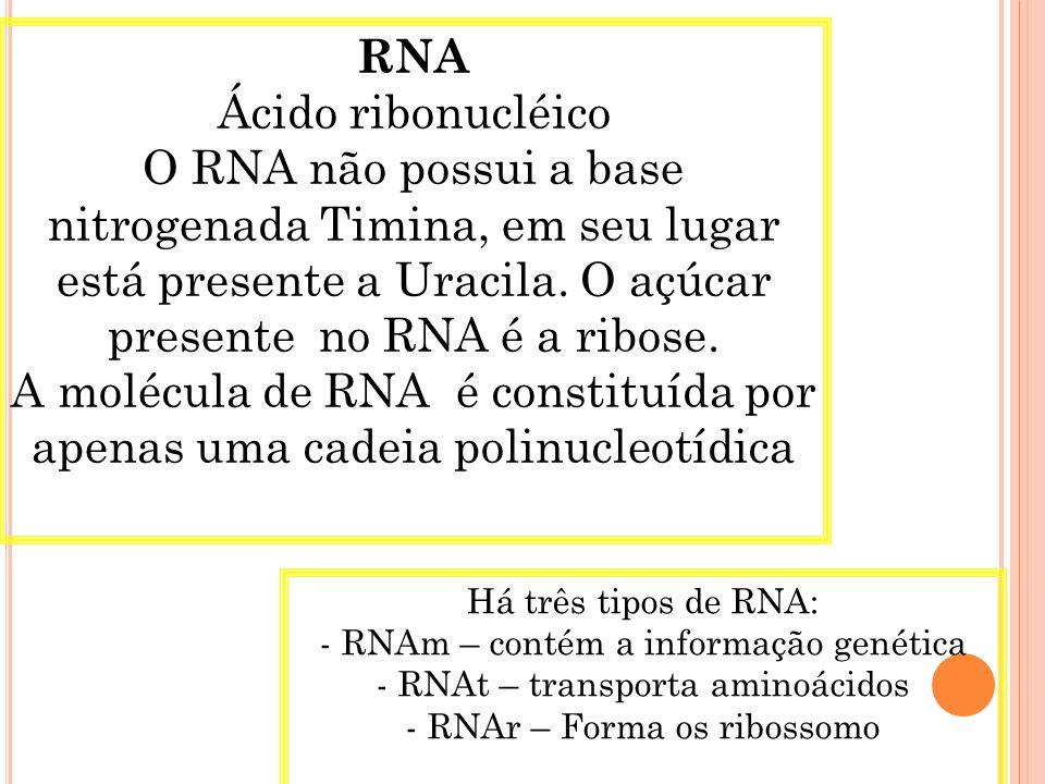 Os dois filamentos que compõem o DNA se enrolam, um sobre o outro, formando uma dupla hélice, semelhante um espiral de caderno, podendo ter milhares de nucleotídeos.