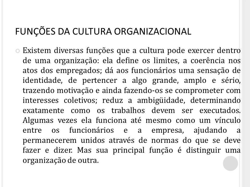 FUNÇÕES DA CULTURA ORGANIZACIONAL Existem diversas funções que a cultura pode exercer dentro de uma organização: ela define os limites, a coerência no