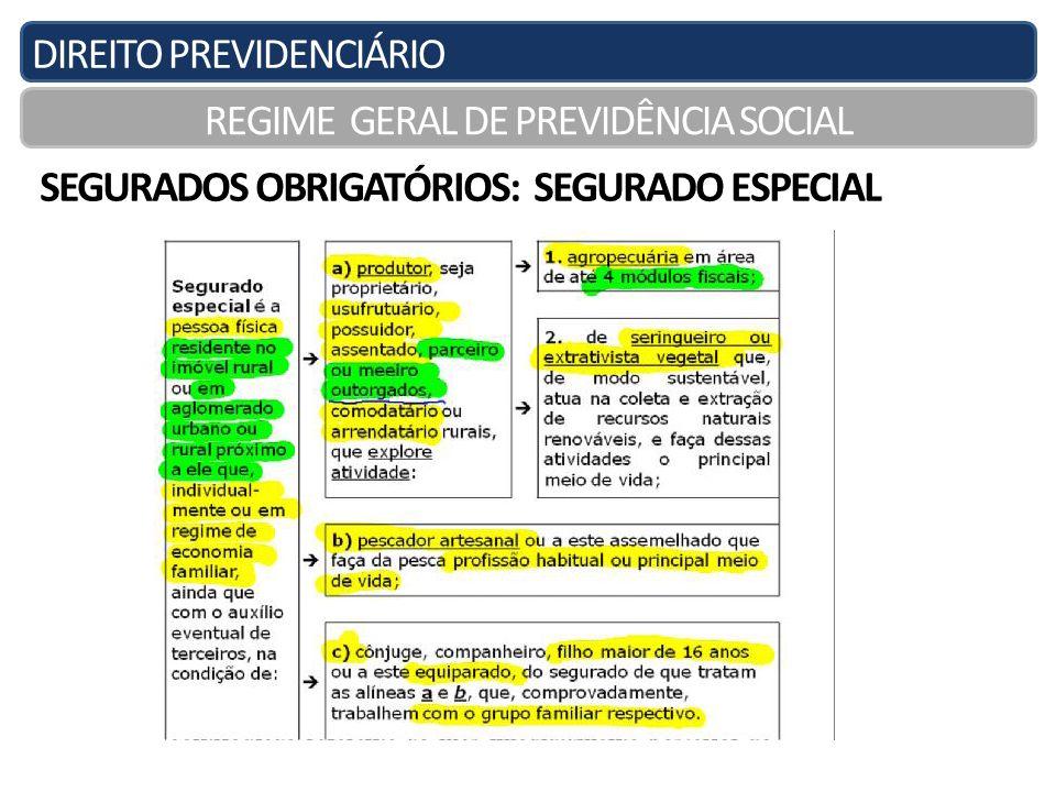 DIREITO PREVIDENCIÁRIO REGIME GERAL DE PREVIDÊNCIA SOCIAL SEGURADOS OBRIGATÓRIOS: SEGURADO ESPECIAL