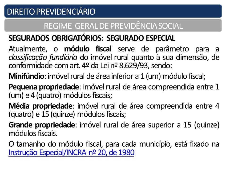 DIREITO PREVIDENCIÁRIO REGIME GERAL DE PREVIDÊNCIA SOCIAL SEGURADOS OBRIGATÓRIOS: SEGURADO ESPECIAL Atualmente, o módulo fiscal serve de parâmetro par