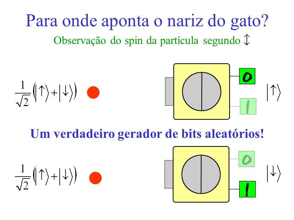 Para onde aponta o nariz do gato? Observação do spin da partícula segundo Um verdadeiro gerador de bits aleatórios!