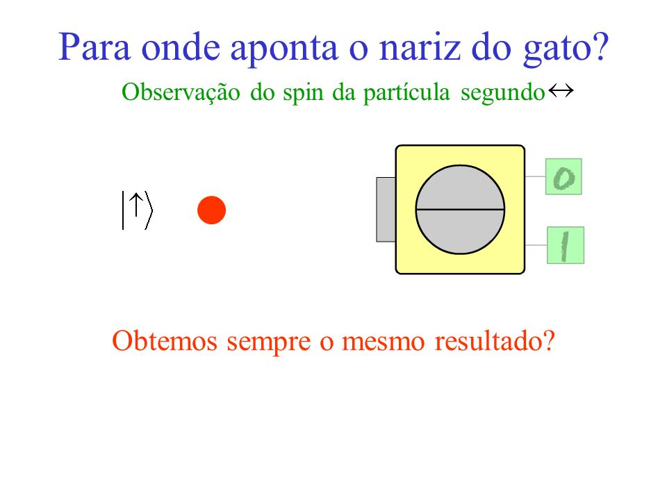 Para onde aponta o nariz do gato? Observação do spin da partícula segundo Obtemos sempre o mesmo resultado?