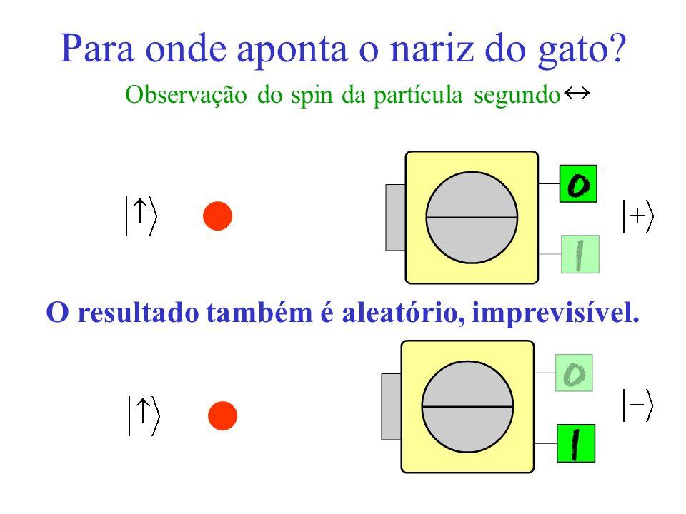 Para onde aponta o nariz do gato? Observação do spin da partícula segundo O resultado também é aleatório, imprevisível.