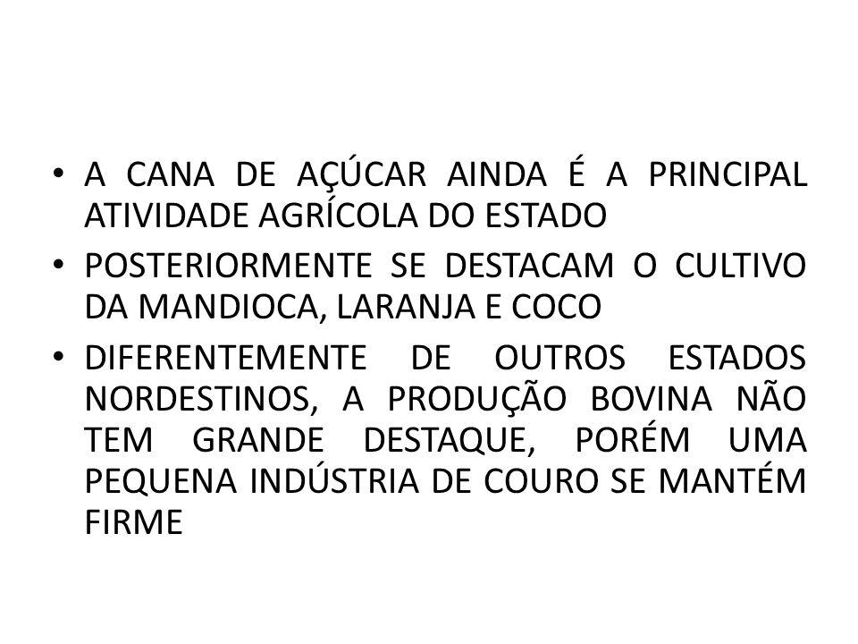 A CANA DE AÇÚCAR AINDA É A PRINCIPAL ATIVIDADE AGRÍCOLA DO ESTADO POSTERIORMENTE SE DESTACAM O CULTIVO DA MANDIOCA, LARANJA E COCO DIFERENTEMENTE DE OUTROS ESTADOS NORDESTINOS, A PRODUÇÃO BOVINA NÃO TEM GRANDE DESTAQUE, PORÉM UMA PEQUENA INDÚSTRIA DE COURO SE MANTÉM FIRME