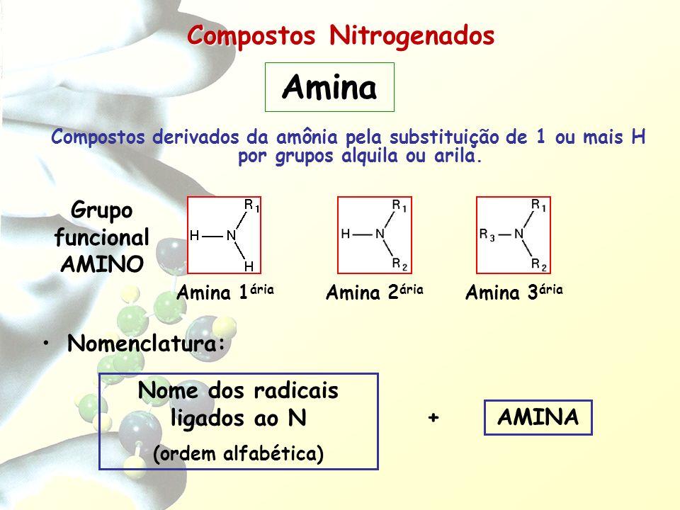 Compostos Nitrogenados Compostos derivados da amônia pela substituição de 1 ou mais H por grupos alquila ou arila. Nomenclatura: AMINA + Nome dos radi