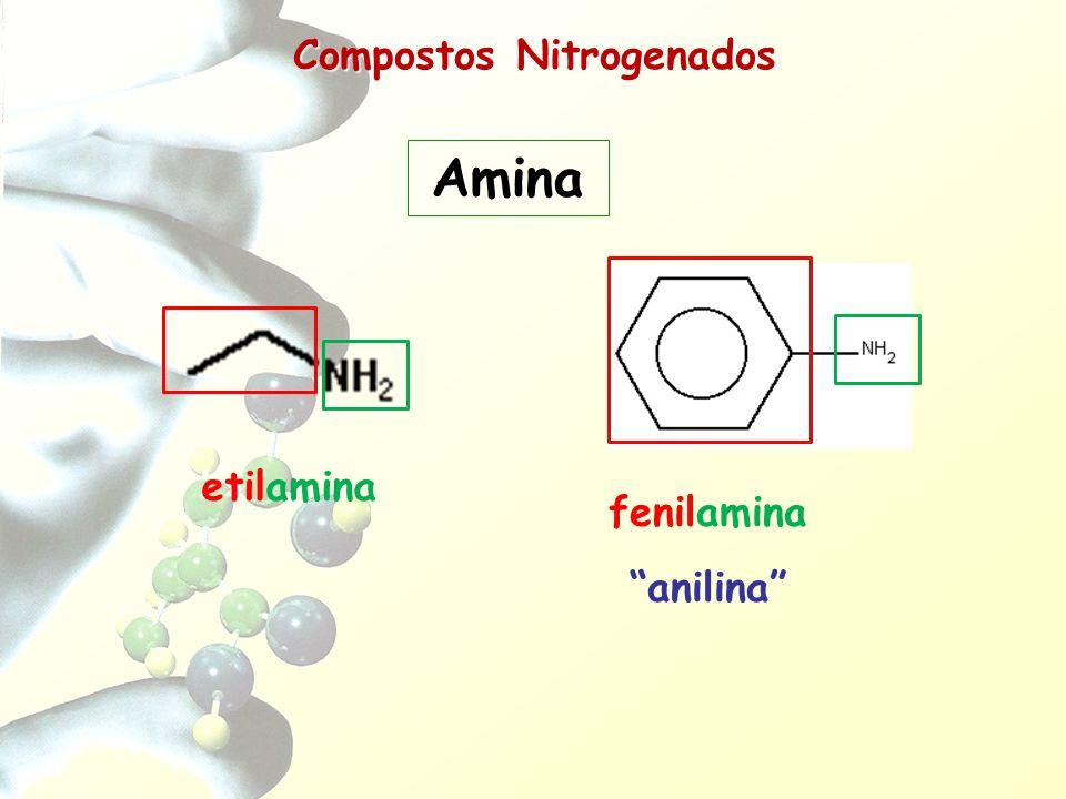 - Hidrocarbonetos HC (R) - Haletos R-X - Éteres R-O-R - Álcoois R-OH - Fenóis Ar-OH - Aldeídos R-CHO - Cetonas R-CO-R - Ácidos Carboxílicos R-COOH - Ésteres R-COO-R - Cloretos de Ácidos R-COCl - Sais de Ácidos R-COO - Ca + - Anidridos de Ácidos R-COOOC-R - Aminas R-NH 2 - Amidas R-CONH 2 - Nitrocompostos R-NO 2 - Nitrilas R-C N - Ácidos Sulfônicos R-SO 3 H - Composto de Grignard R-MgX