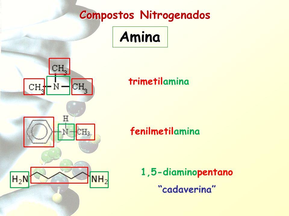 Compostos Nitrogenados Amina trimetilamina fenilmetilamina 1,5-diaminopentano cadaverina