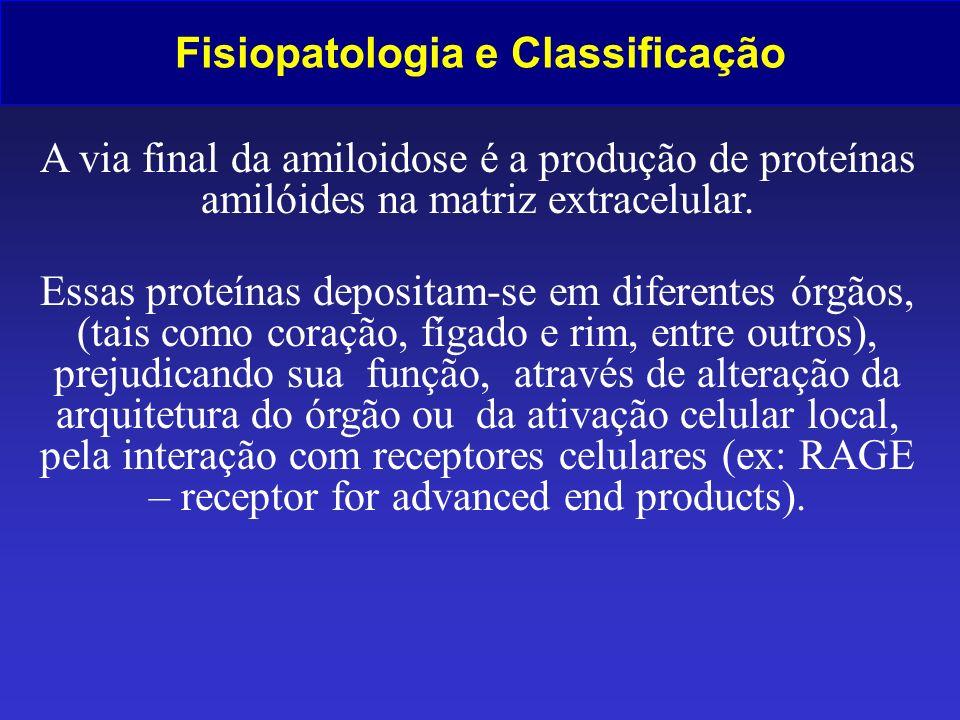 Fisiopatologia e Classificação A via final da amiloidose é a produção de proteínas amilóides na matriz extracelular. Essas proteínas depositam-se em d
