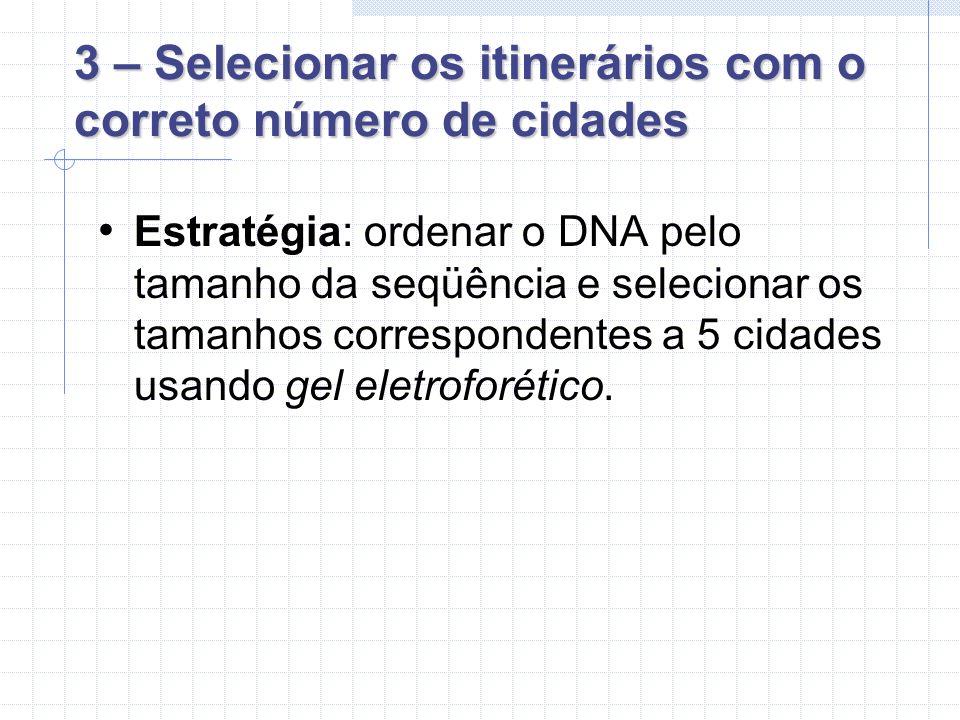 3 – Selecionar os itinerários com o correto número de cidades Estratégia: ordenar o DNA pelo tamanho da seqüência e selecionar os tamanhos correspondentes a 5 cidades usando gel eletroforético.